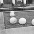 Вандалы испортили конструкции фонтана и клумбу братской могилы