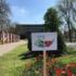 Ще більш зелений та ошатний: Цьогоріч у Кривому Розі висадили близько 800 дерев та 1000 троянд