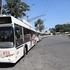 В Кривом Роге вышел на маршрут новый муниципальный транспорт